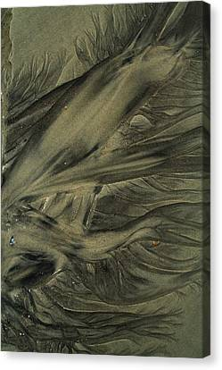 Sand Patterns Myths Of The Ages Canvas Print by Todd Breitling