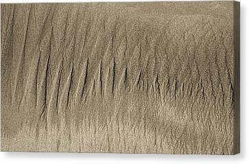 Sand Patterns On The Beach 3 Canvas Print