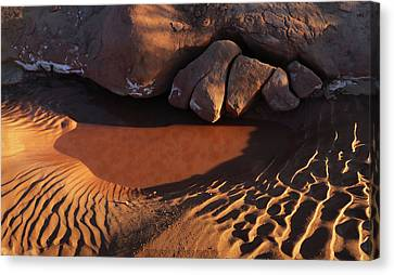 Sand Puddle Canvas Print by Jerry LoFaro