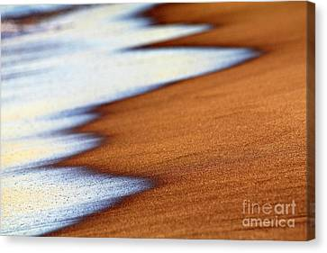 Sand And Waves Canvas Print by Tony Cordoza