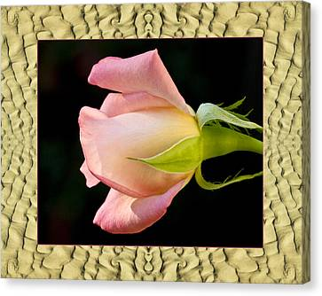 Canvas Print featuring the photograph Sandflow Rose by Bell And Todd