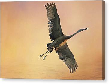 Canvas Print featuring the photograph Sandhill At Sunset by Donna Kennedy