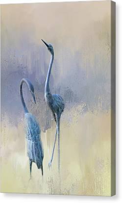 Sandhill Cranes Canvas Print by Terry Davis