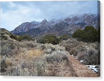 Sandia Mountains Storm Winter Landscape Canvas Print by Andrea Hazel Ihlefeld