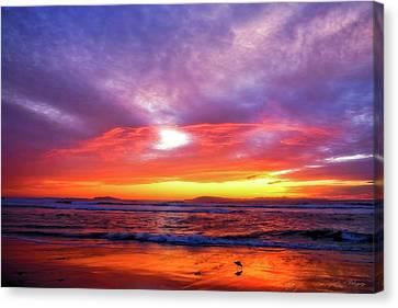Sandpiper Sunset Ventura California Canvas Print