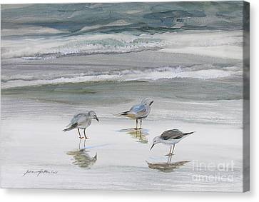 Print On Canvas Print - Sandpipers by Julianne Felton