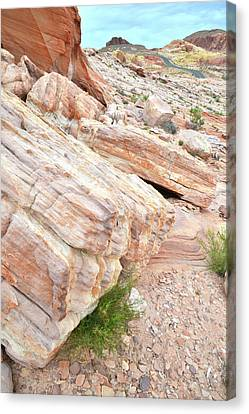Canvas Print featuring the photograph Sandstone Along Park Road In Valley Of Fire by Ray Mathis