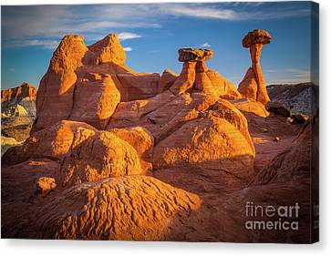 Toadstools Canvas Print - Sandstone Castle by Inge Johnsson