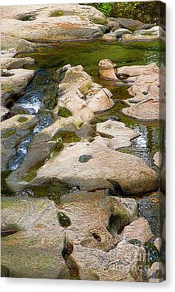 Canvas Print featuring the photograph Sandstone Creek Bed by Sharon Talson