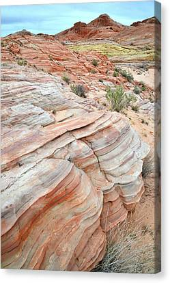 Canvas Print featuring the photograph Sandstone Wash In Valley Of Fire by Ray Mathis
