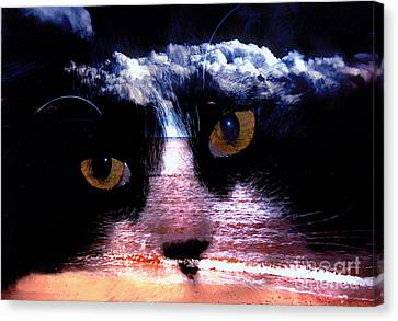 Bruster Canvas Print - Sandy Paws by Clayton Bruster