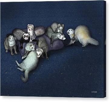 Ferret Canvas Print - Sandy's Ferrets by Barbara Hymer