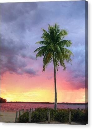 Sanibel Palm Tree Canvas Print
