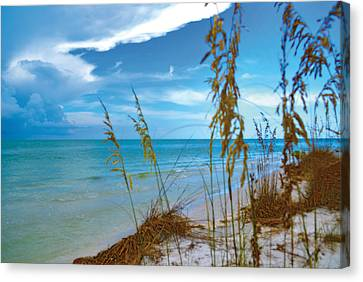 Canvas Print featuring the photograph Sanibel Sea Oats by Timothy Lowry