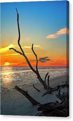 Driftwood Canvas Print - Sanibel Sunrise by Marvin Spates