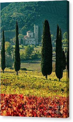 Sant Antimo Canvas Print by Brian Jannsen
