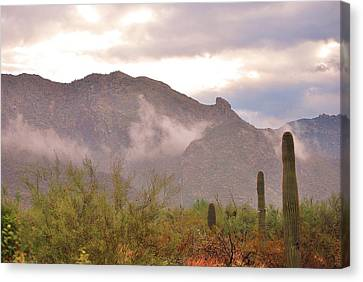 Santa Catalina Mountains II Canvas Print by Donna Greene