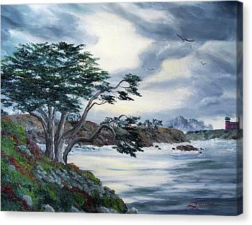 Santa Cruz Cypress Tree Canvas Print by Laura Iverson