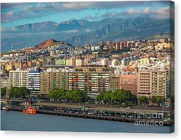 Santa Cruz De Tenerife Canvas Print by Brian Jannsen