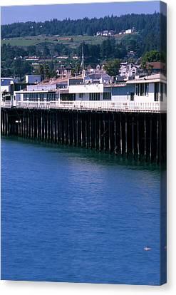 Santa Cruz Pier Canvas Print by Soli Deo Gloria Wilderness And Wildlife Photography