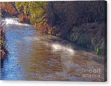 Santa Cruz River - Arizona Canvas Print by Donna Greene