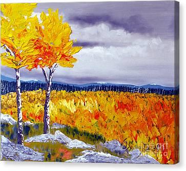 Santa Fe Aspens Series 7 Of 8 Canvas Print