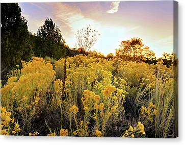 Canvas Print featuring the photograph Santa Fe Magic by Stephen Anderson