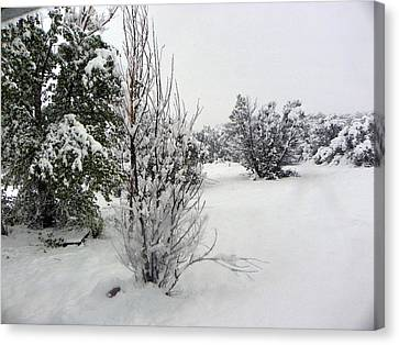 Santa Fe Snowstorm 2017 Canvas Print