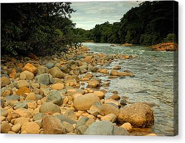 Santa Maria River Canvas Print by Iris Greenwell