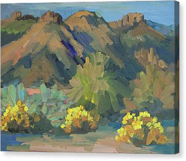 Santa Rosa Mountains And Brittle Bush Canvas Print