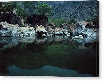 Santa Ynez River Canvas Print by Soli Deo Gloria Wilderness And Wildlife Photography