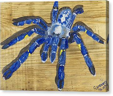 Sapphire Ornamental Tarantula Canvas Print by Debbie LaFrance