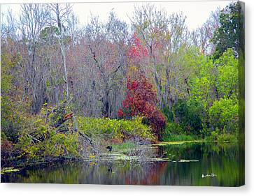 Canvas Print featuring the photograph Sarasota Reflections by Madeline Ellis