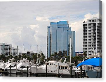 Sarasota Canvas Print by Steven Scott