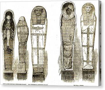 Sarcophagi And Egyptian Mummies Canvas Print