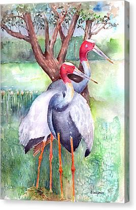 Sarus Cranes Canvas Print