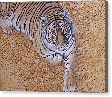 Canvas Print featuring the painting Sasha by Tom Roderick