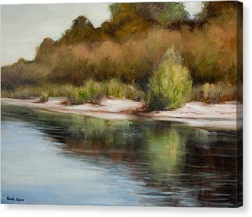 Satilla River Reflections Canvas Print