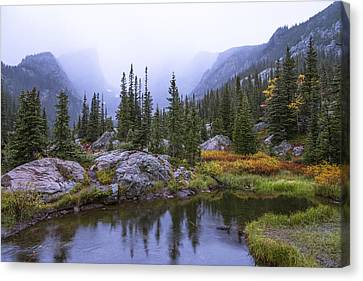 Rocky Mountain Canvas Print - Saturated Forest by Chad Dutson