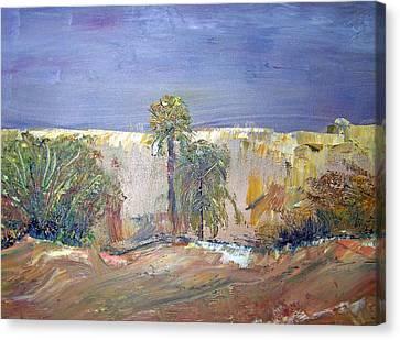 Patricia Taylor Canvas Print - Saudi Arabia Wadi Hanifa 1976 by Patricia Taylor