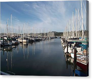 Sausalito Yacht Harbor - The Best Harbor In The San Francisco Bay Area. Canvas Print