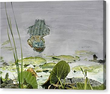 Alligator Canvas Print - Savannah Gator by Tom Hedderich