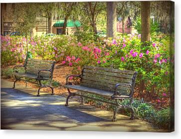 Savannah In Springtime Canvas Print by Linda Covino