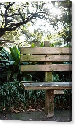 Savannah Park Bench Canvas Print by Erin Cadigan