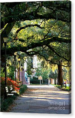 Savannah Park Sidewalk Canvas Print by Carol Groenen
