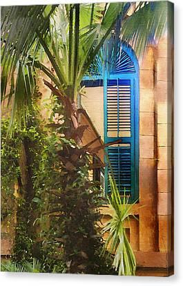 Savannah Window Canvas Print