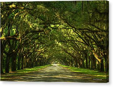 Savannah Wormsloe Plantation Live Oak Alley Art Canvas Print by Reid Callaway