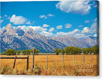 Canvas Print featuring the photograph Saw Tooth Mountains  by Robert Pearson