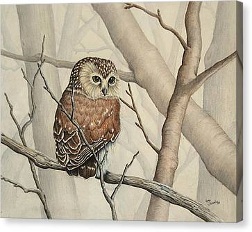 Sawhet Owl Woods Watcher Canvas Print by Renee Forth-Fukumoto
