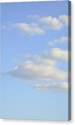 Canvas Print featuring the photograph Say Vertical by Wanda Krack